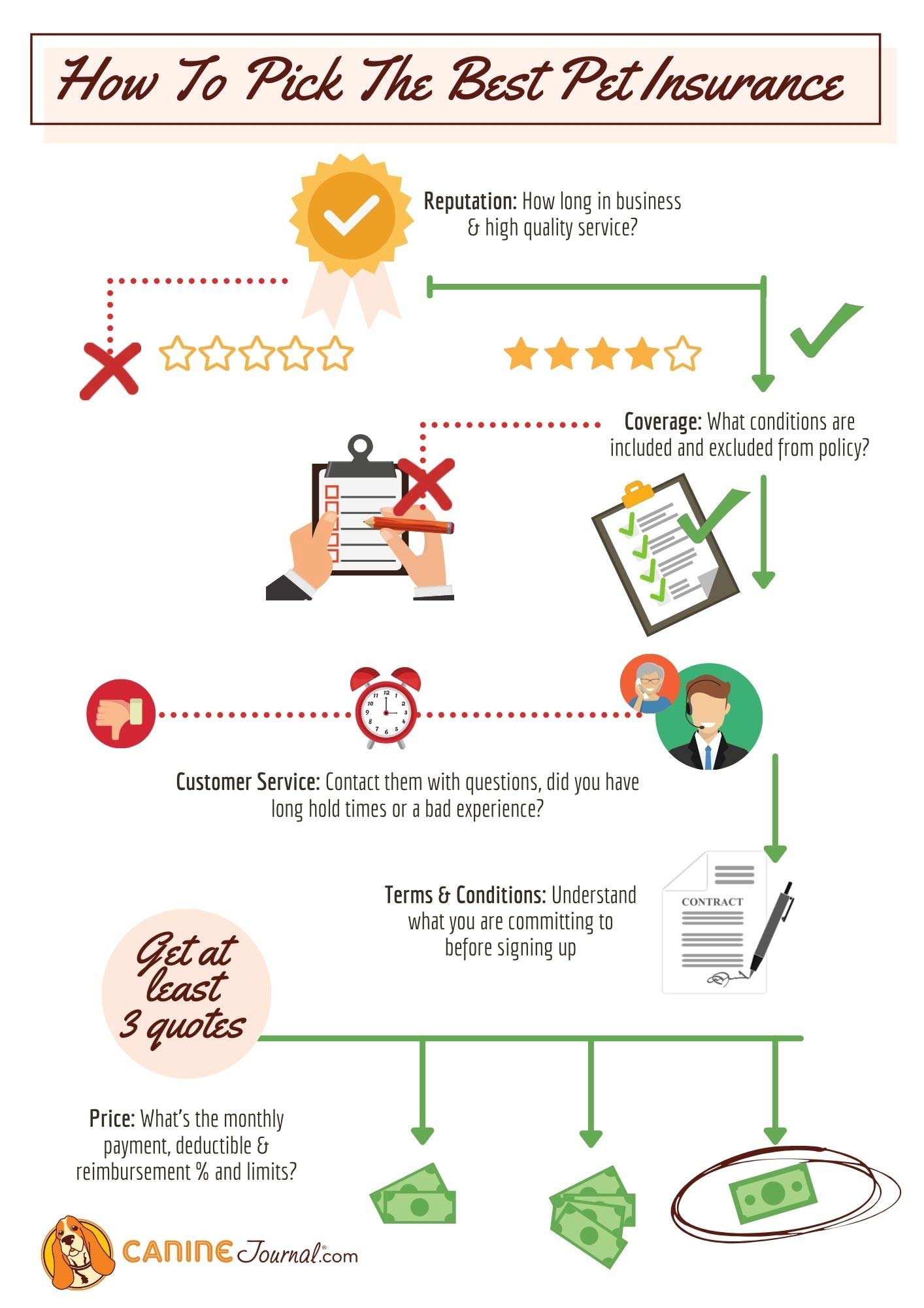 How To Pick The Best Pet Insurance Infographic