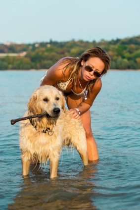 Girl with golden retriever in water with stick
