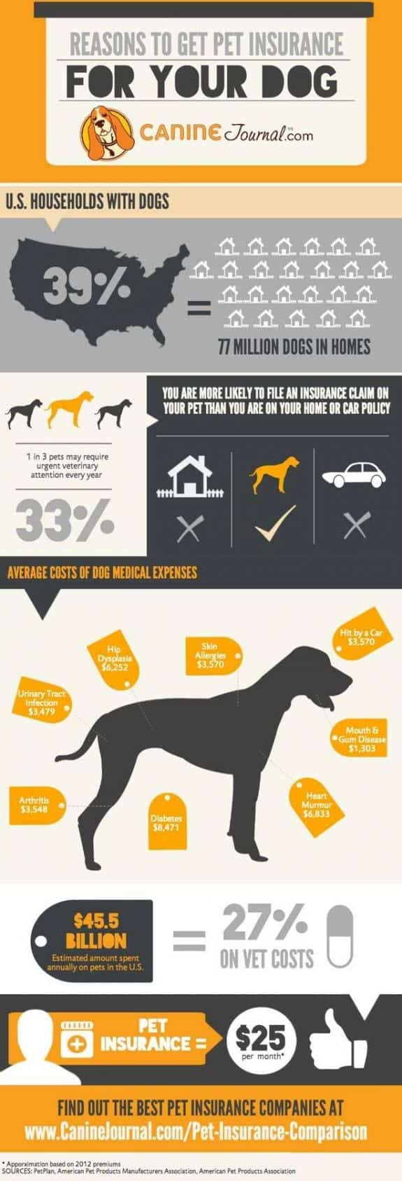 Reasons to Get Pet Insurance for Your Dog
