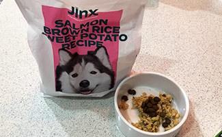 Jinx Salmon Dog Food as a topper