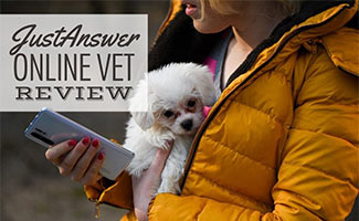 Girl holding small white dog in coat while on the phone (caption: JustAnswer Online Vet Review)