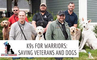 Group of vets with dogs (caption: K9s For Warriors: Saving Veterans And Dogs)