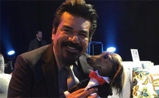 Knox the Dox at World Dog Awards with George Lopez