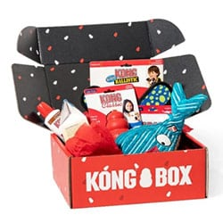 Kong Monthly Box