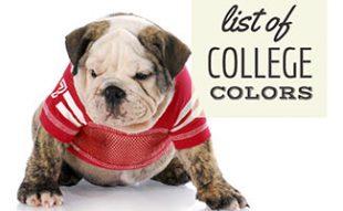 Bulldog in college uniform (caption: List Of College Colors)