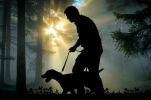 Man with dog hunting in dark