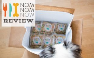 NomNomNow box with dog