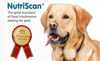 Nutriscan Dog Allergy Test Box