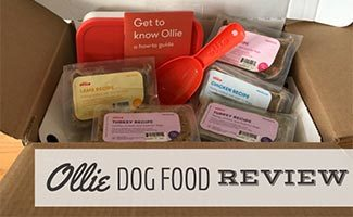 Box of Ollie dog food (caption: Ollie Dog Food Review)