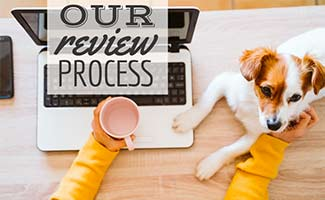 Girl sitting at desk with dog (caption: Our Review Process)