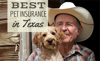Cowboy with dog (caption: Best Pet Insurance In Texas)