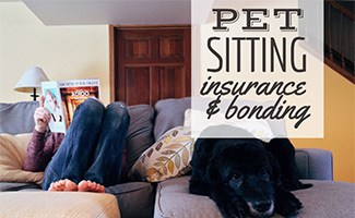Dog sitter on couch with lab (caption: Pet Sitting Insurance & Bonding)