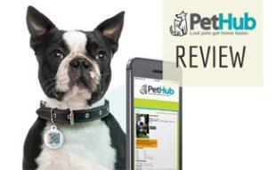 PetHub on dog with phone
