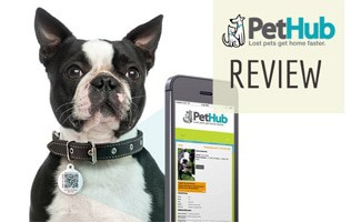 PetHub ID tag on dog with phone: PetHub Review