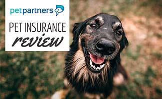 Dog smiling (caption: PetPartners Pet Insurance Reviews)