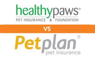 Healthy Paws vs Petplan