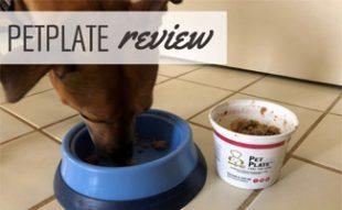 Dog eating PetPlate