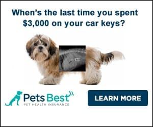 PetsBest Insurance: Lost Car Keys