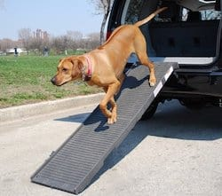 Pet Step Folding Pet Ramp