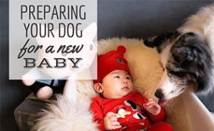Baby laying next to dog (caption: Preparing Your Dog for a New Baby)