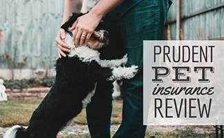 Man holding and hugging pet (caption: Prudent Pet Insurance Review)