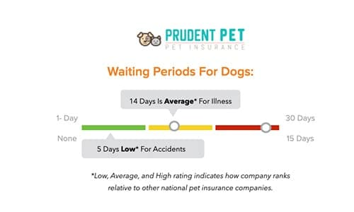 Prudent Pet Insurance waiting periods
