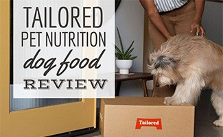 Dog looking at box of Tailored Pet food at door (Caption: Tailored Pet Nutrition Dog Food Review)