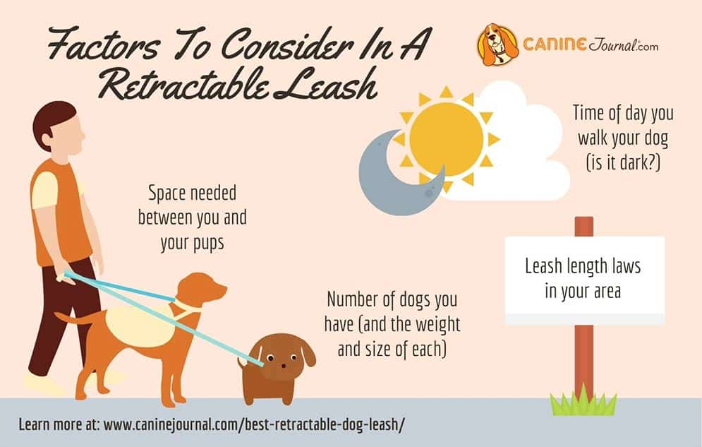 Factors To Consider In Retractable Dog Leash Graphic