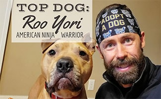 Top Dog Interview: Roo Yori, American Ninja Warrior and rescue pit bull