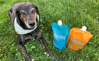 Sally laying in grass with Sunday lawn care products