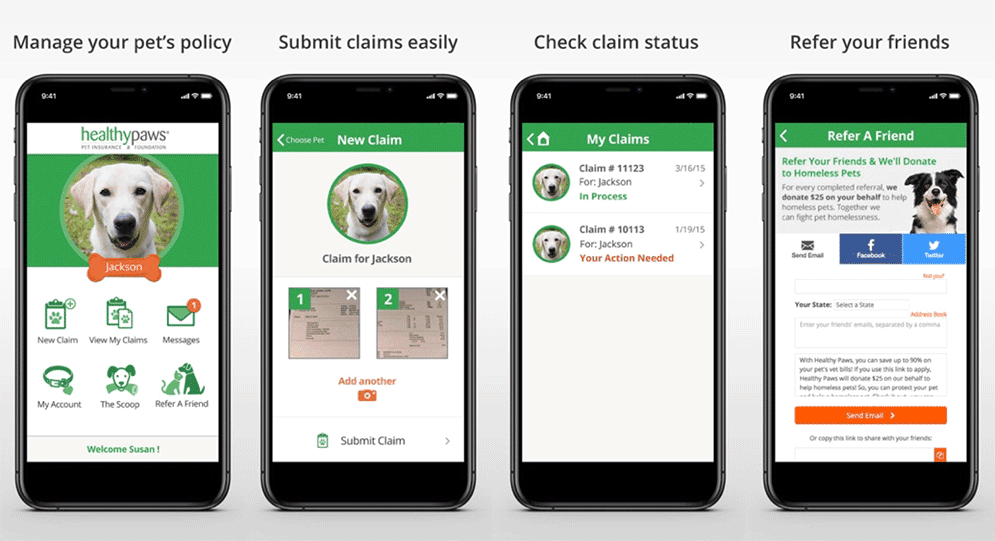 Healthy Paws App Screenshots