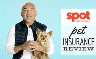 Cesar Millan with dog (caption: Spot Pet Insurance Review)