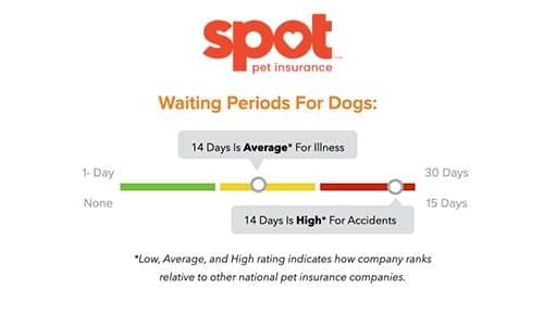 Spot Pet Insurance waiting periods