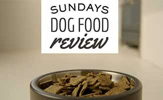 Bowl of dog food (Caption: Sundays For Dogs Review)