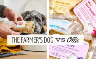 Person squeezing Farmer's Dog food out of bag into dog bowl with dog sniffing it next to bags of Ollie dog food (Caption: The Farmer's Dog vs Ollie)