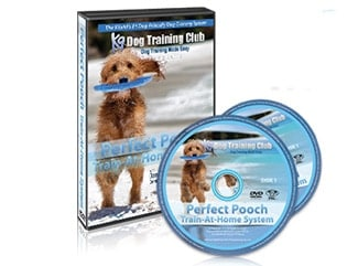 The Perfect Pooch course
