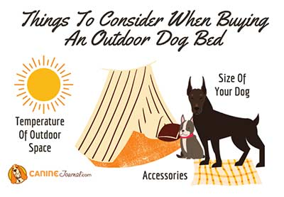 Things To Consider When Buying An Outdoor Dog Bed
