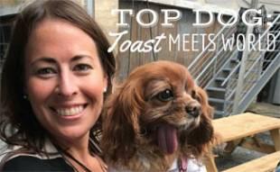 Toast Meets World with Sadie