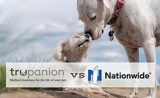 Two dogs nose to nose (caption: Trupanion vs Nationwide)