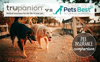 Trupanion vs Pets Best logos with two dogs running (caption: Pet Insurance Comparison)
