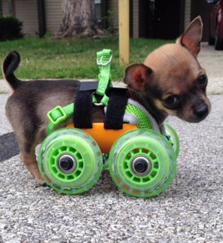 TurboRoo on Wheels