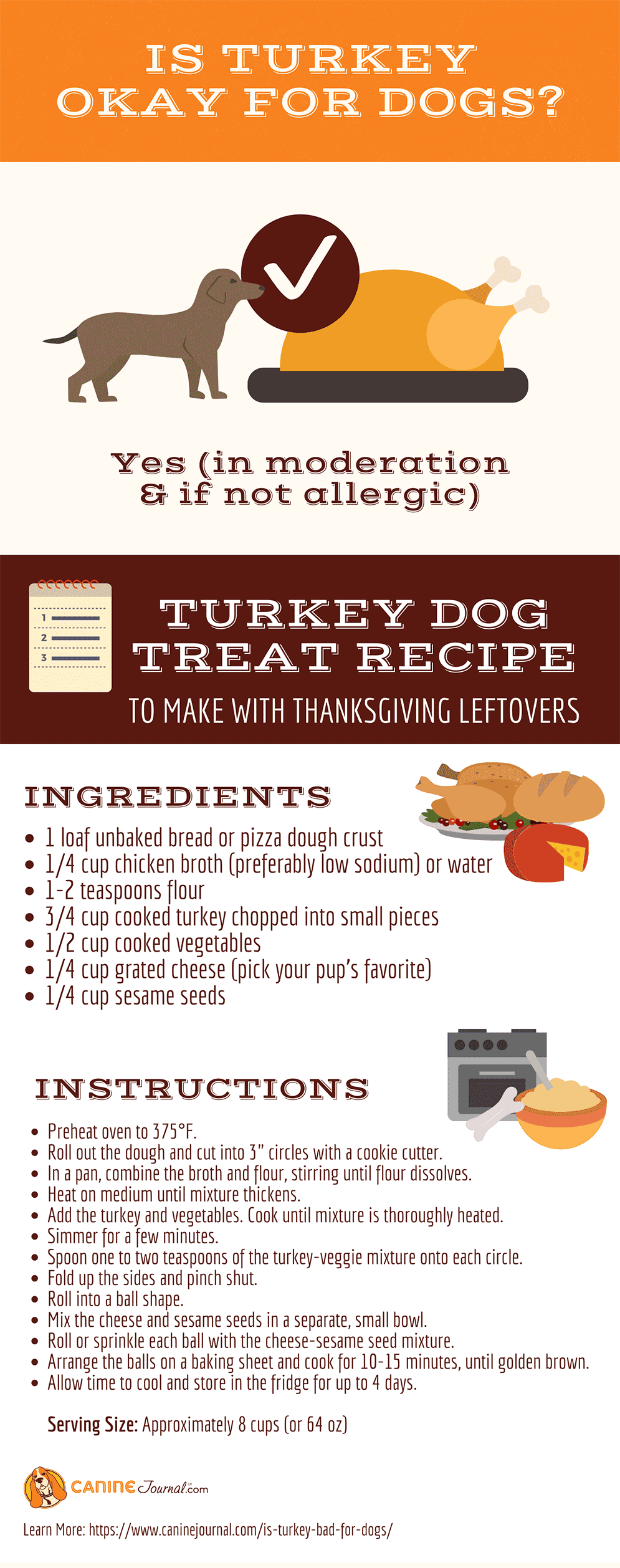 Can Dogs Eat Turkey and Turkey Treat Recipe Graphic
