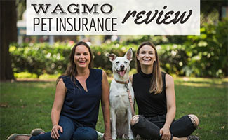 Two girls with dog, caption: Wagmo Pet Insurance Review