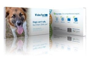 Wisdom Panel Dog DNA kit