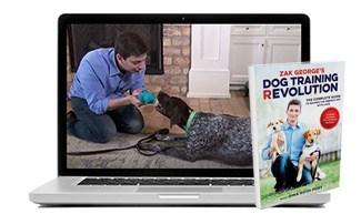 Zak George's Dog Training courses